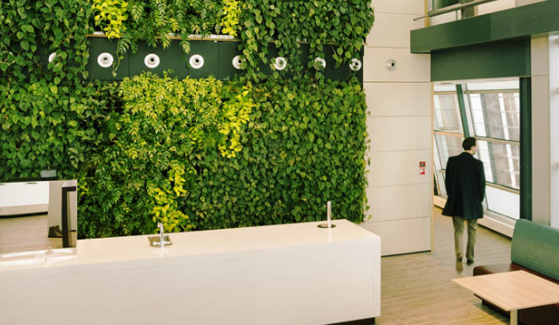 办公室绿化的重要性